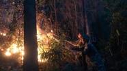 Bổ sung thêm phương tiện chữa cháy đối với những địa phương hay xảy ra cháy rừng