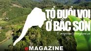 Tổ đuổi voi ở Bắc Sơn