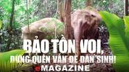 Bảo tồn voi, đừng quên vấn đề dân sinh!