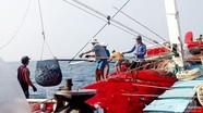 Các quy định bắt buộc đối với tàu cá, có hiệu lực từ năm 2020