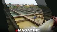 Loại bỏ tính 'cục bộ' trong sản xuất, kinh doanh nước sạch!