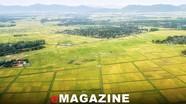 Nghệ An tái cơ cấu ngành nông nghiệp theo hướng bền vững, nâng cao giá trị