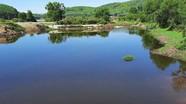 Nghệ An chỉ đạo xử lý ô nhiễm môi trường ở hồ Tràng Đen, xã Nam Hưng (Nam Đàn)