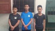 Bắt khẩn cấp băng nhóm trộm trâu liên tỉnh từ Nghệ An ra Nam Định