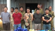 5 nghi phạm bị bắt khi đưa 50.000 viên ma túy vào Việt Nam