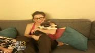 Người phụ nữ chi bộn tiền để ghép thận cho mèo 17 tuổi
