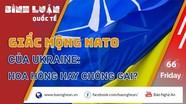 Giấc mộng NATO của Ukraine: Hoa hồng hay chông gai?