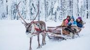 Trải nghiệm độc đáo ở Phần Lan - quê hương của ông già Noel