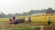 Côn đồ bảo kê gặt lúa vác dao, kiếm truy sát 2 nông dân trọng thương