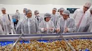 Nhà máy chế biến hoa quả tươi và thảo dược Vân Hồ (Sơn La) của tập đoàn TH đi vào hoạt động