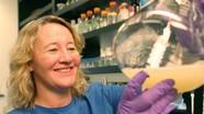 10 nhà khoa học nữ đoạt giải Nobel trong vòng 30 năm qua