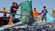 """Lệnh cấm đánh bắt cá ở biển Đông của Trung Quốc: """"Không có giá trị"""""""