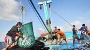 """EC xem xét """"thẻ vàng"""" với thủy sản Việt Nam trong tháng 5/2018"""
