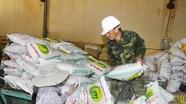 Chính phủ xuất 2.897 tấn giống hỗ trợ các địa phương bị thiệt hại do thiên tai