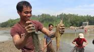 Hàng trăm người thích thú tham gia ngày hội bắt cá