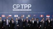 CPTPP chính thức có hiệu lực, Việt Nam sẽ cắt giảm thuế với 11 nước thành viên