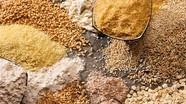 Danh mục sản phẩm thức ăn chăn nuôi theo tập quán được sử dụng tại Việt Nam