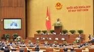 Quốc hội họp trực tuyến là linh hoạt, không cản trở quyền của đại biểu