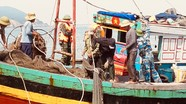 Kiểm ngư Nghệ An xử phạt 5 tàu cá đánh bắt trái phép