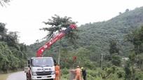 Nghệ An: Gần 200 thôn bản chưa có điện lưới quốc gia
