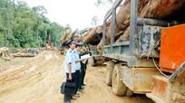 Nghệ An có hơn 90 doanh nghiệp đầu tư hơn 200 triệu đô tại Lào