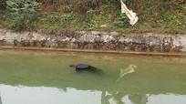 Phát hiện thi thể cụ ông nổi trên sông trong ngày 30 Tết