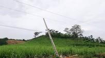 Vụ 4 người tử vong ở Nghệ An: Vi phạm nghiêm trọng hành lang an toàn lưới điện