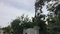Chặt cành cây tránh bão, người đàn ông bị điện giật tử vong