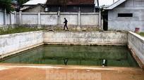 Công an điều tra vụ nam sinh lớp 7 tử vong ở bể bơi của phường