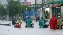 Sài Gòn mưa như trút nước, cây đổ đè người trọng thương