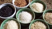 """Nhận biết gạo """"ngậm"""" hóa chất"""