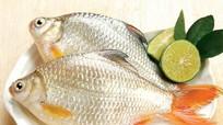 Cách chọn cá tươi ngon bà nội trợ nên biết