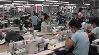 Công nhân nhà máy may nhiễm Covid-19, nguy cơ lớn bùng dịch ở Yên Thành (Nghệ An)
