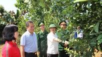 Lan tỏa phong trào thi đua yêu nước ở Quế Phong