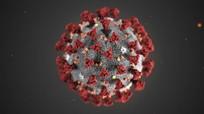 Vì sao số ca nhiễm mới COVID-19 tăng đột biến gấp nhiều lần?