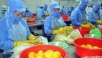 Việt Nam xuất khẩu rau quả thu 13 triệu USD mỗi ngày gần Tết