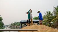 Bộ Công Thương kiến nghị xuất khẩu gạo trở lại