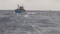 Bị tàu nước ngoài đâm chìm, 2 thuyền viên Nghệ An mất tích