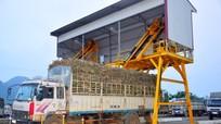 Tân Kỳ cần chú trọng phát triển công nghiệp chế biến