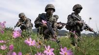 Mỹ và Hàn Quốc có kế hoạch ngừng diễn tập quân sự
