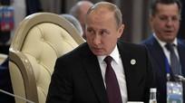 Ông Putin kêu gọi các nước vùng Caspian hợp tác chống khủng bố