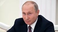 Mừng Quốc khánh Việt Nam, ông Putin hài lòng về quan hệ hữu nghị giữa hai nước