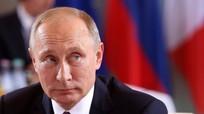 OSCE khẳng định không có dấu hiệu can thiệp cuộc bầu cử giữa kỳ Mỹ