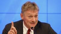 Ông Peskov: Nga đang nỗ lực hết sức mang lại hòa bình cho Đông Nam Ukraine