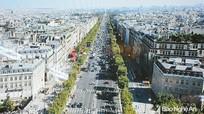 Tăng nguồn lực đầu tư, quan tâm môi trường đô thị cho TP Vinh và TX Cửa Lò