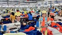 Ban Thường vụ Tỉnh ủy Nghệ An thống nhất chủ trương đầu tư 2 dự án giày da, may mặc