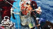 Ngư dân Nghệ An tố bảo hiểm Pjico chưa hoàn trả tiền bảo hiểm thuyền viên tàu cá