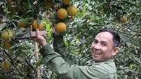 UBND tỉnh ban hành quyết định thành lập Trung tâm Dịch vụ nông nghiệp Con Cuông và TX Cửa Lò