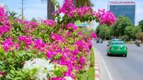 Thời tiết 11/8: Nghệ An tiếp tục đón đợt nắng nóng kéo dài