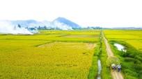 Thời tiết ngày 22/9: Nhiều khu vực ở Nghệ An có mưa vừa và mưa to